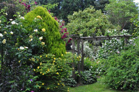 Garden at White House Farm, Kent