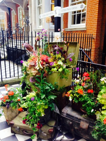 Travel Garden at Oldfield Ptnrs 130 Buckingham Palace Road SW1