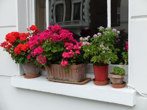 A different array of pots is a charming solution but needs to be carefully thought out.