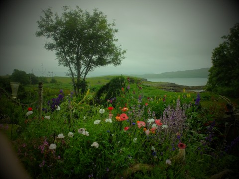 The colours sing out in the often moody Hebridean light.