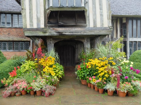 The reknowned cluster of pots outside Great Dixter always includes a dahlia or two in the autumn.