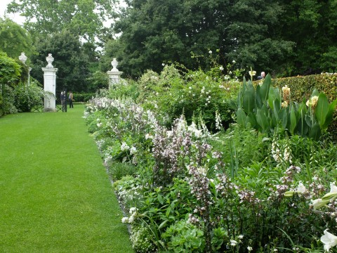 The dazzling white border at Stellenberg, a Cape Dutch homestead.  Like many S.African gardens it is clearly inspired by English gardens.  Penstemon 'Husker's Red', which tends to look v. disappointing in the U.K here looks stunning combined with white foxgloves, lilies, jasmine, roses and a host of other plants.