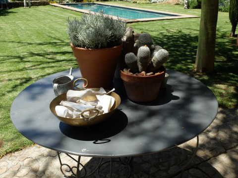 A bowl of baboon bones remind one that this garden is in South Africa not Provence.