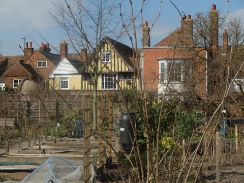 The garden is overlooked by the houses of Abbey Street, one of the most attractive streets in England.  It was nearly swept away for a bypass in the 1960s.