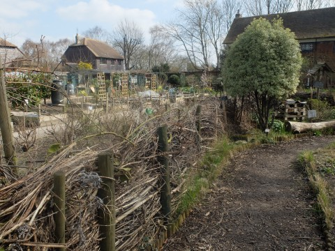 The 'dead hedge'.