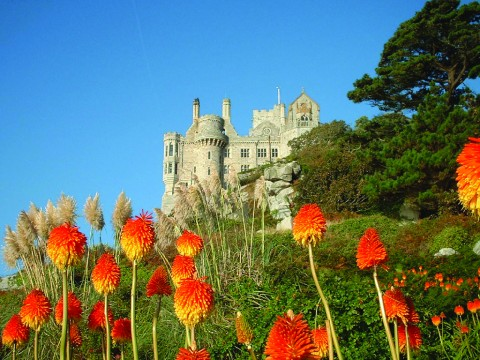 St. Michael's Mount, Marazion, Cornwall.  A sub-tropical coastal garden with tender plants from Mexico, the Canary Islands and South Africa.  The terraced beds cling to granite slopes.