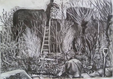 Gardening at Great Dixter, a drawing by Rosie Maccurrach.