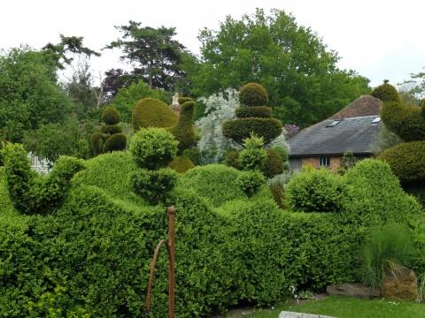 A bonanza of topiary abounds at Balmoral.