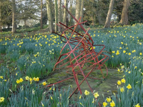 I like to think these daffodils are an Edwardian planting.  The sculpture is 'The Crash' it is the result of a 'hit and run' assault on our new park railings.