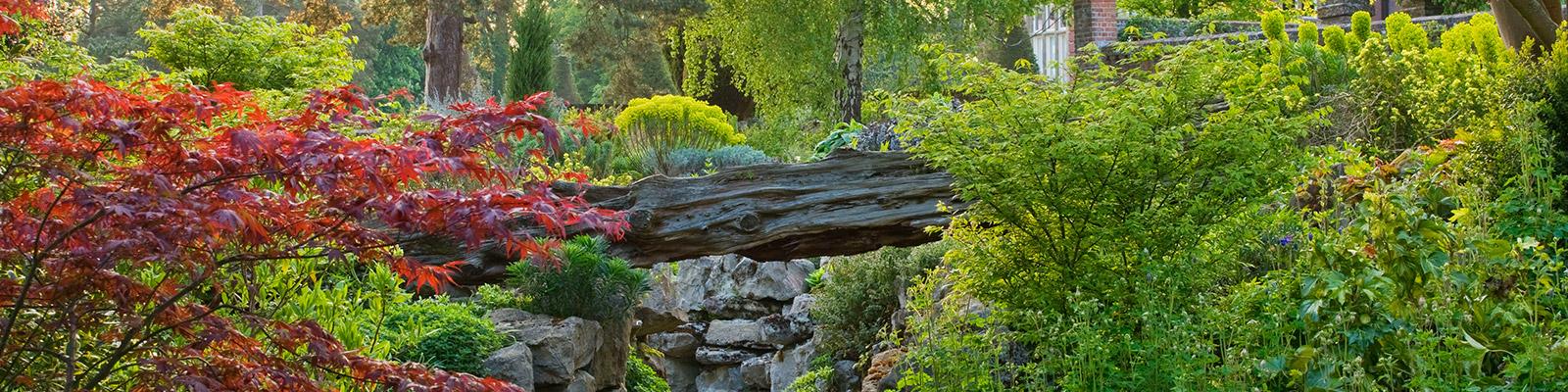 Doddington Place Gardens - Rock Garden